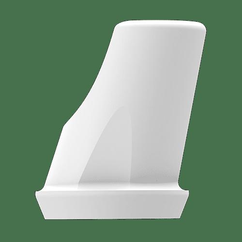 P6 Abutment RN Abutment(incl. Screw) - 15' Angled, 1mm